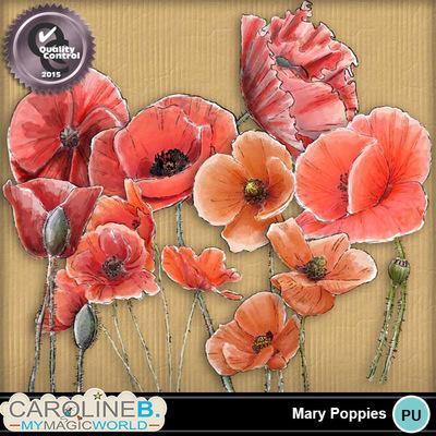 Mary-poppies-1_1