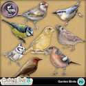 Garden-birds_1_small