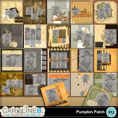 Pumpkin-patch-12x12-pb-000