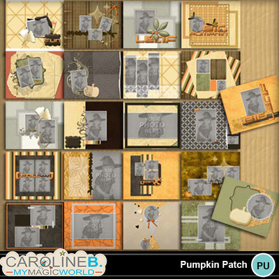 Pumpkin-patch-8x11-pb-000