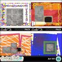 Art-101-8x11-album-000_small