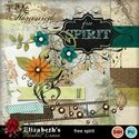 Freespirit-001_small