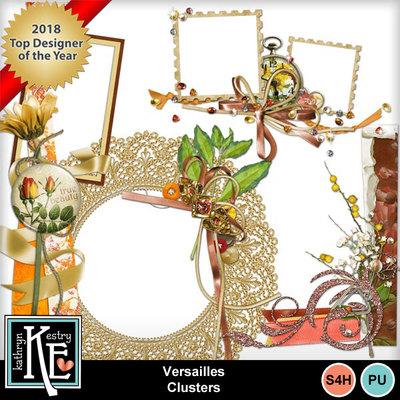 Versaillesclusterframes
