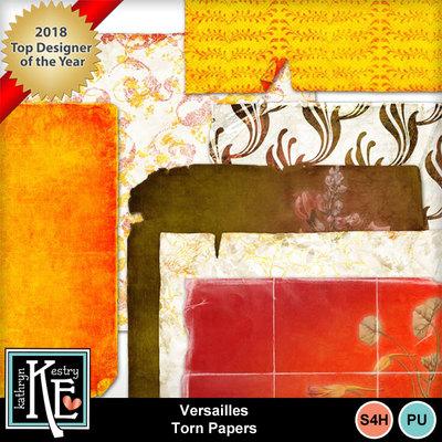 Versaillestornpapers01
