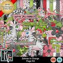 Zebras01_small