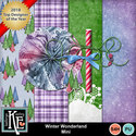 Winterwonderlandmini1_small