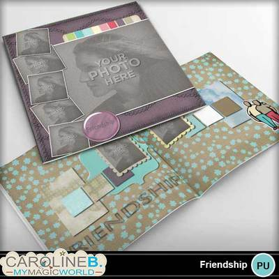 Friendship-12x12-pb-00
