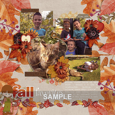 Fall_favorites_by_dagmar_dagi_kupralova_mm