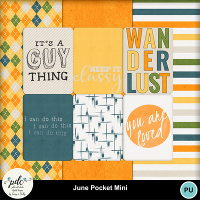 Pdc_june_pocket_mini_bt-web