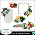 Mm_ls_sportsvolleyballclusters_small