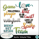 Mm_ls_sportsvolleyballtitles_small