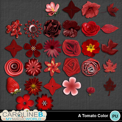 A-tomato-color-serie-flowers_1