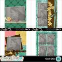 Cool-chic-11x8-album-3-000_small