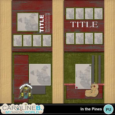 In-the-pines-11x8-album-2-000