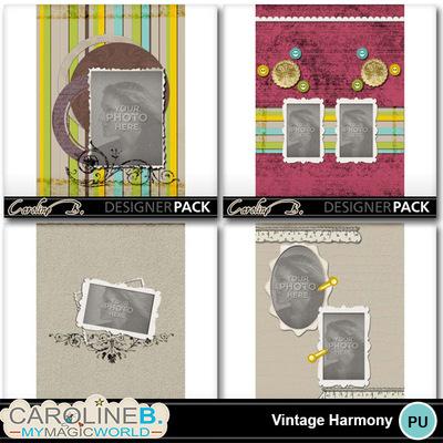Vintage-harmony-11x8-album-005