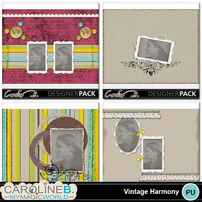Vintage-harmony-8x11-album-005