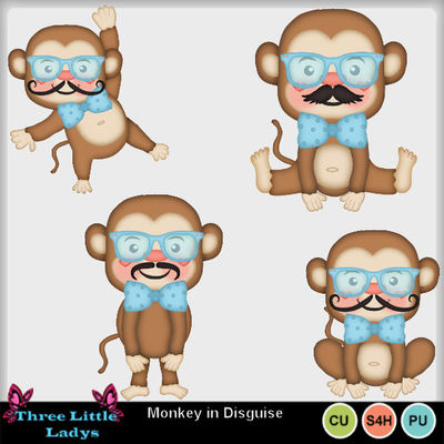 Monkey_in_disguise-tll