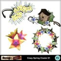 Crazy_spring_clt01_small