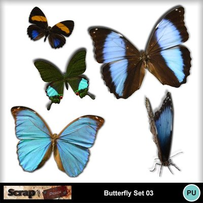 Butterfly_set03