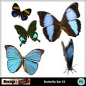 Butterfly_set03_small