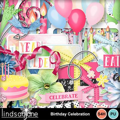 Birthdaycelebration_3
