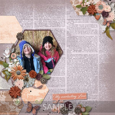 Scrapbookcrazy-creations-by-robyn-antique-love-rochelle-02