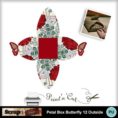 Butterfly_petalbox12_out