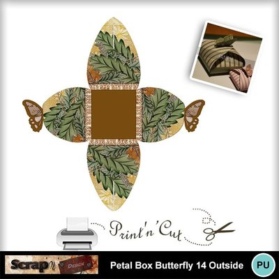 Butterfly_petalbox14_out
