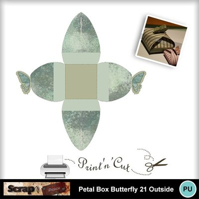 Butterfly_petalbox21_out