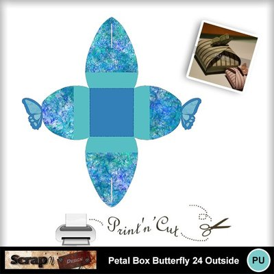 Butterfly_petalbox24_out