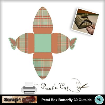 Butterfly_petalbox30_out