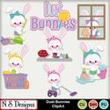 Dust_bunnies_ca_small