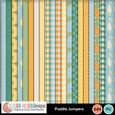 Puddlejumpers_papers
