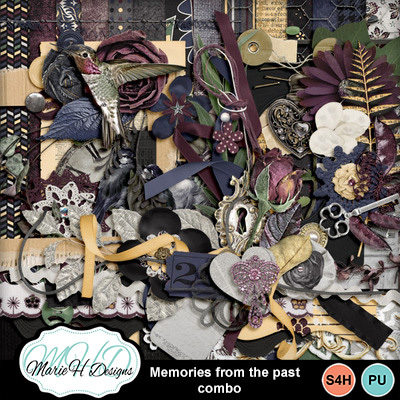 Memories_from_the_past_combo_01