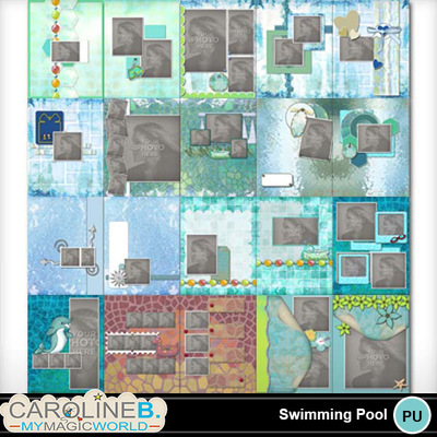Swimming-pool-11x8-pb-000