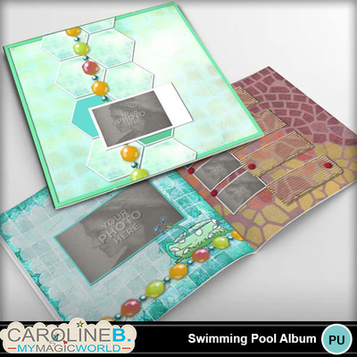 Swimming-pool-12x12-pb-1