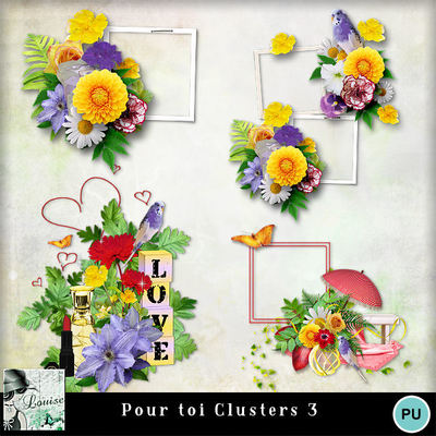 Louisel_pour_toi_clusters3_preview