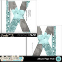Album-page-11x8-letter-x-000_small