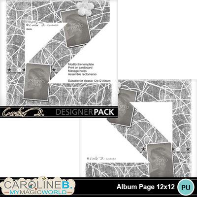 Album-page-12x12-letter-z-000