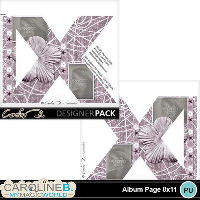 Album-page-8x11-letter-x-000