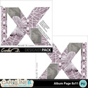 Album-page-8x11-letter-x-000_small