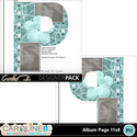 Album-page-11x8-letter-p-000_small
