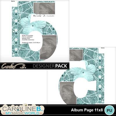 Album-page-11x8-number-5-000