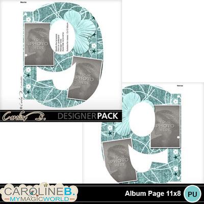 Album-page-11x8-number-9-000