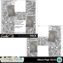 Album-page-12x12-letter-h-000_small