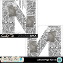Album-page-12x12-letter-n-000_small