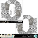 Album-page-12x12-number-0-000_small