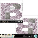 Album-page-8x11-letter-b-000_small