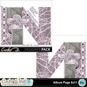 Album-page-8x11-letter-n-000_small