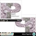 Album-page-8x11-letter-p-000_small